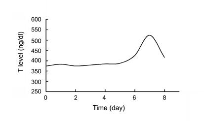 Ejaculation and testosterone sleep
